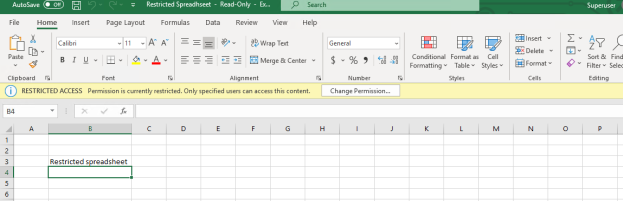 super user pening the spreadsheet